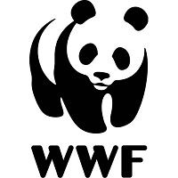 Image result for wwf