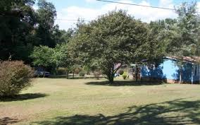 rent land for tiny house. Half-Acre For Tiny House In North Carolina Sale Rent Land
