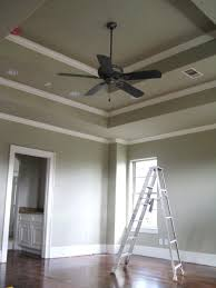 painted tray ceilings