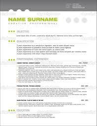 professional resume layout getessay biz 10 images of professional resume layout