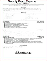 Security Guard Daily Activity Report Template Best Of Excel