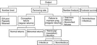 farrowing chart using statistical process control to investigate
