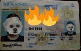 Id Maine Fake Card Maker