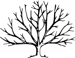 Small Picture Fall Tree Without Leaves Coloring Page Tree Pinterest Fall