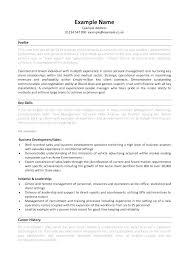 Skill Set Resume Template Thrifdecorblog Com