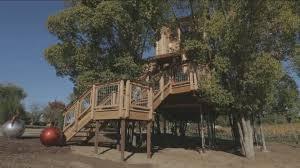 Luxury Animal Planet treehouse breaks California countys rules