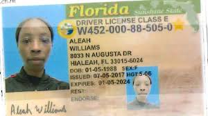 Fake Car Id To For Female Wanted Wgxa Macon Florida Using Rent