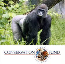 busch gardens florida resident tickets. SeaWorld \u0026 Busch Gardens Conservation Fund Florida Resident Tickets