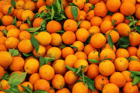 Image result for picture of orange fruit