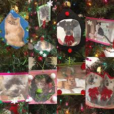 the office ornaments. The Hingham Office Started To Get In Holiday Spirit With Homemade Pet Ornaments For
