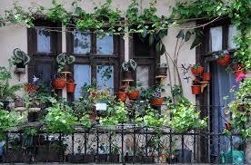 easy balcony garden