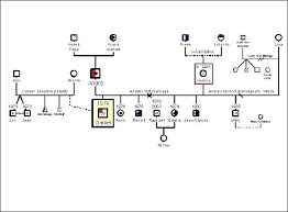A Case Example Make Genogram Pdf And Families Employing