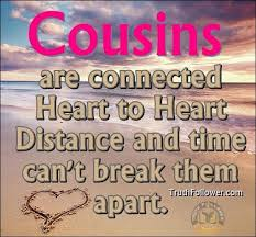 Beautiful Cousin Quotes Best of Funny Quotes About Cousins Cousinsareconnectedheartheart