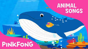 whoosh blue whale blue whale songs pinkfong songs for children