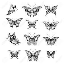 タトゥー スタイル蝶のイラスト