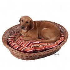wicker dog bed. Plain Bed Aumller Wicker Dog Basket On Bed T