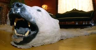 polar bear rug polar bear rug with head fake