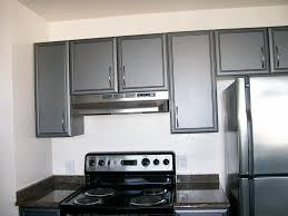 Small Galley Kitchen Design Kitchen Galley Kitchen Efficient Galley Kitchens Small Galley
