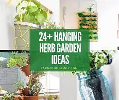 24 best hanging herb garden ideas