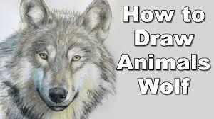 realistic animals to draw. Simple Realistic How To Draw A Wolf  Realistc Animals Drawing Lesson Step By Time  Lapse Tutorial YouTube On Realistic Animals To Draw I