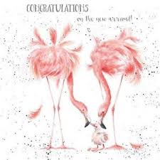 Wrendale Designs New Baby Greeting Card Flamingo Congratulations New