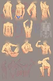 Best 25 Anatomy study ideas on Pinterest