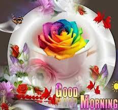 Wunderschönen Guten Morgen Spruch Bilder Kostenlos Downloaden Gb