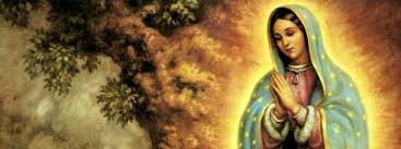 Image result for our lady of guadalupe