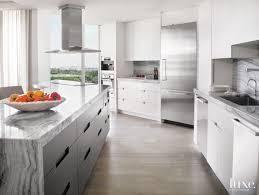 modern white kitchens. Modern White Kitchen With Zebra Quartzite Countertops Kitchens N