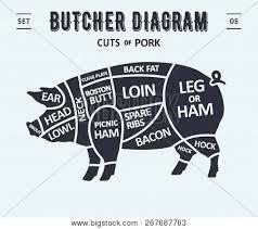 Cut Of Meat Set Poster Butcher Diagram And Scheme Pork