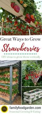 415 best Homesteading \u0026 Gardening images on Pinterest   Vegetable ...