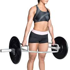 How Much Does A Trap Bar Weigh Fitness Apie