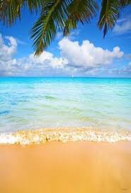 36 <b>Best</b> Summer holiday backdrops images in 2018 | Backgrounds ...