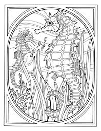 Small Picture Skunk Coloring Pages nebulosabarcom