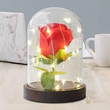 Đèn LED Chúc Hoa Hồng Vĩnh Cửu Hoa Lồng Đèn Cổ Tích Cưới Giáng Sinh Chúc Phúc  Đèn Trang Trí Phòng Đèn Pin/Nguồn Điện USB|Holiday Lighting