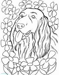 Kleurplaat Veulen Mooi Kleurplaten Mandala Hond Archidev Inside For