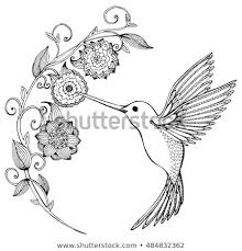 hummingbirds and flowers drawing. Plain Hummingbirds Flying Hummingbird Hummingbird And Flowers Stylized Bird  Drinking Nectar From Flower With Hummingbirds And Flowers Drawing O