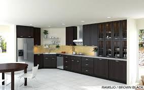 Ikea Kitchen Designer Cool Inspiration Ideas