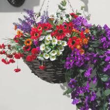 Eternal Bloom: Hanging Baskets | Flowers