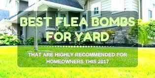 diatomaceous earth fleas yard kill in treatment treating yards for best ticks diatomaceous earth fleas yard
