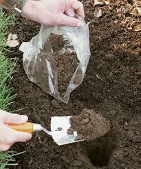 Everything You Need To Know About Soil Sampling Rimol