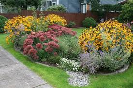 Small Picture Front Yard Rain Garden Design With Rain Garden Design For
