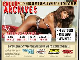Shemale sites free passwords
