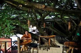 Costa Rica In June 2012 Arenal Monteverde And Manuel Antonio Treehouse Monteverde Costa Rica