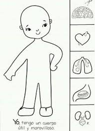 Outline Of Child Body Coloring Pages Awesome Human Body Anatomy