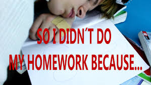Why I Don t Do My Homework   Memes   Percentage Calculator Do my homework