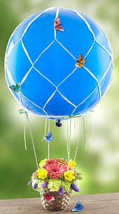 erfly hot air balloon