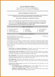 Digitalng Resume Format Examples Entry Level Template Doc Sample Pdf