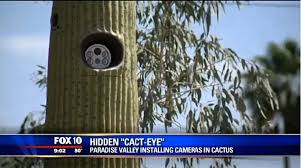 Are Hidden A Of Freaking Small Residents Cactus Out Cameras The qE8rxpw1E