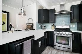 27 Small Kitchens with Dark Cabinets Design Ideas Designing Idea